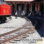 Summer de Anima Inside