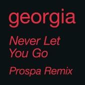 Never Let You Go (Prospa Remix) by Georgia