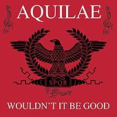 Wouldn't It Be Good von Aquilae