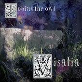 Visalia by Tobias the Owl