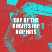Top of the Charts Hip Hop Hits van Platinum Deluxe, Tough Rhymes, Miami Beatz, Groovy-G, Fresh Beat MCs, Hot Contender, Bling Bling Bros, Slam Queenz, Graham Blvd, Countdown Mix-Masters, Sister Nation, RnB Flavors, 2Glory