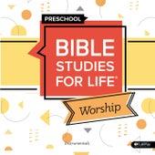 Bible Studies for Life Preschool Worship Instrumentals Summer 2020 by Lifeway Kids