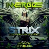 Even Angels Tire Of Exstacy von S-Trix