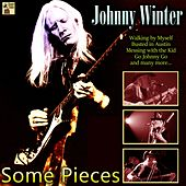 Some Pieces de Johnny Winter