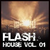 Flash House, Vol. 01 de Various Artists