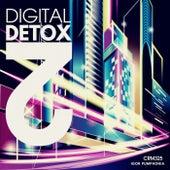 Digital Detox 2 by Igor Pumphonia