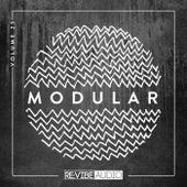 Modular, Vol. 25 de Various Artists