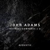 Nothing Compares 2 U (Acoustic) de John Adams