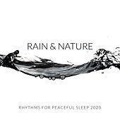 Rain & Nature Rhythms for Peaceful Sleep 2020 by Sleep