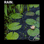 Rainy Night by Rain Sounds and White Noise