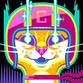 Code Racer (Richard S. Remix) [feat. Richard S.] by Cat Temper