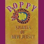 Snakes of New Jersey by Poppy