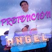 Pretención de Angel