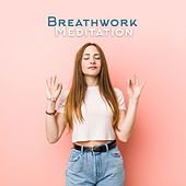 Breathwork Meditation - Nerve Calming and Cleansing, Yoga and Mindfulness Music de Stress Relief Calm Oasis