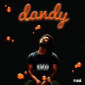 Dandy de Puni