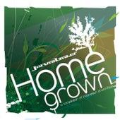 Javabass Homegrown di Various Artists
