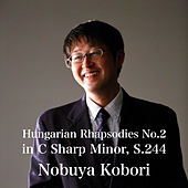 Hungarian Rhapsodies No.2 in C Sharp Minor, S.244 by Nobuya  Kobori