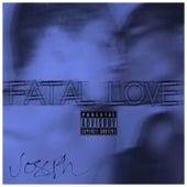 Fatal Love by Joseph