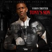 Tony's Son de Yohon Trotter
