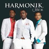Jere'm de Harmonik