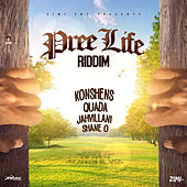 Pree Life Riddim de Various Artists