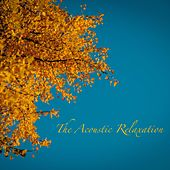 The Acoustic Relaxation von Best Relaxing SPA Music