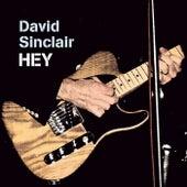 Hey by David Sinclair