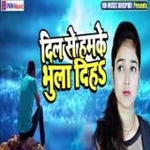 Dil Se Ham Ke Bhula Diha von Ravi Shankar