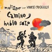 Camino y Hablo Solo by Melingo