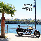 Hits Latinos Vol.1 von Various Artists