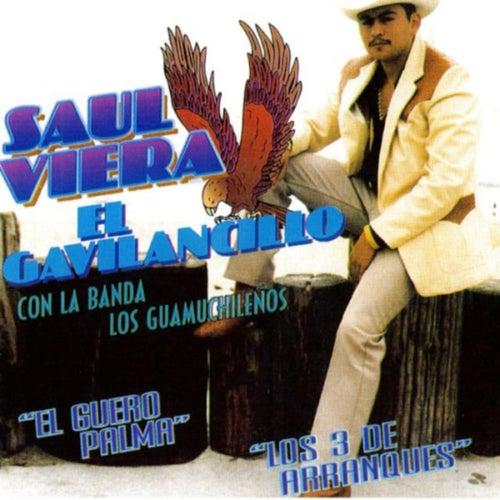 El Guero Palma by Saul Viera el Gavilancillo