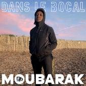 Dans le bocal de Moubarak