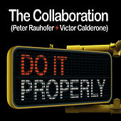Do It Properly by Peter Rauhofer