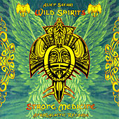 Wild Spirits, Strong Medicine de Various Artists