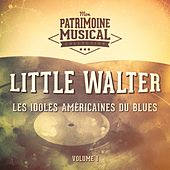 Les idoles américaines du blues : Little Walter, Vol. 1 de Little Walter