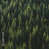 Pure Sounds of Nature de Sounds Of Nature