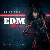 Electro EDM Mix - Dance & Future de Various Artists
