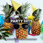 Party Hits di Various Artists