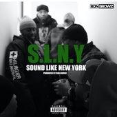 Sound Like New York de Ron Browz