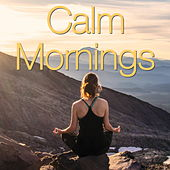 Calm Mornings by Various Artists