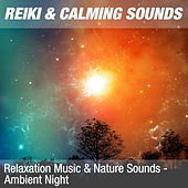 Relaxation Music & Nature Sounds - Ambient Night de Reiki