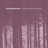 Normal for Bridgwater by Peter Bruntnell