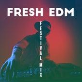 Fresh EDM: Progressive House de Various Artists