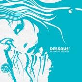 Dessous' Best Kept Secrets by Various Artists