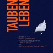 Taubenleben Soundtrack by Paulina Czienskowski
