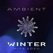 Ambient Winter Hits 2020 de Today's Hits!