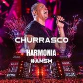 Churrasco (Ao Vivo) de Harmonia Do Samba