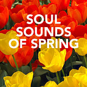 Soul Sounds Of Spring by Various Artists