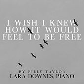 I Wish I Knew How It Would Feel to Be Free by Lara Downes