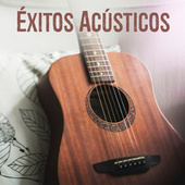 Éxitos Acústicos de Various Artists
